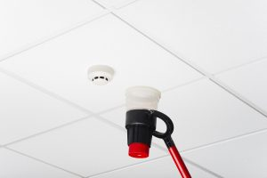 Fire Alarm Maintenance Sussex